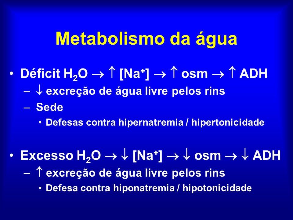 Metabolismo da água Déficit H2O   [Na+]   osm   ADH